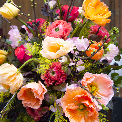 Cours Bouquet Pomone