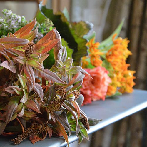 Carte cadeau cours d'art floral