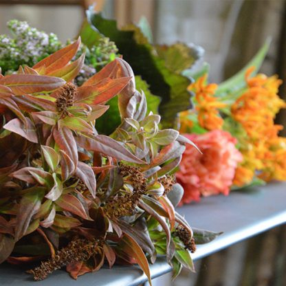 Cours d'art floral privatifs